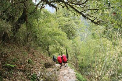 Trekkers passing Bamboo on the Annapurna Base Camp trek
