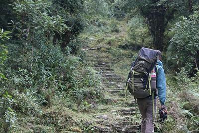 Person trekking the Panchase trek