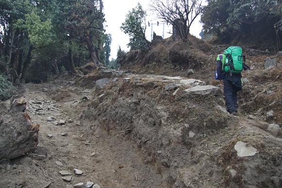 Trekking trail near Chame in Nepal