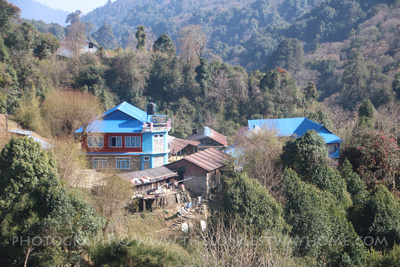 Naghethati on the Ghorepani Poon Hill Trek