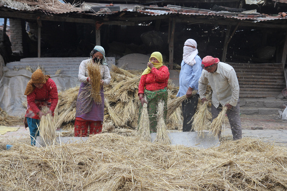 Potters thrashing straw for the kilns