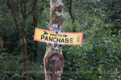 Way to Panchase trail sign