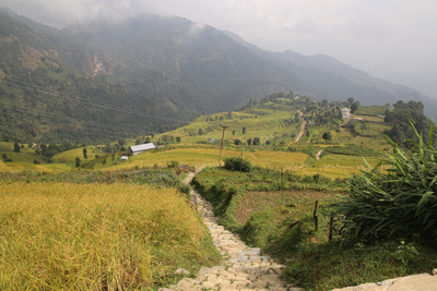 Nepali farmlands near Panchase