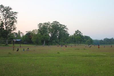 Field in Sauraha