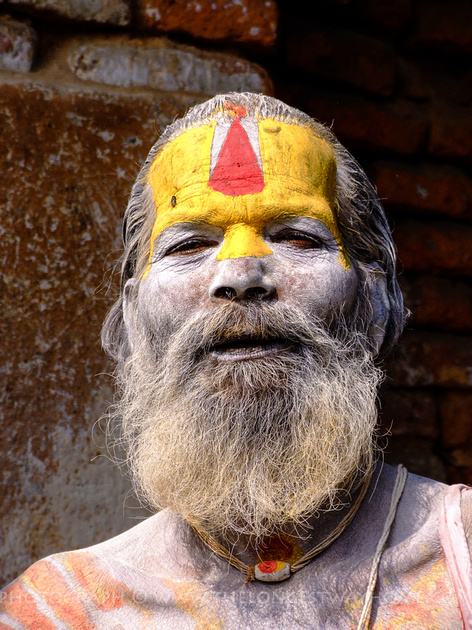 Portrait of bearded Sadhu