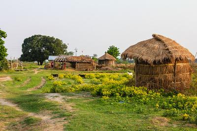 Mud huts and small paths behind Lumbini