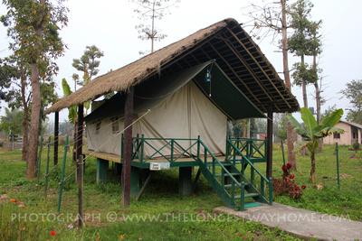 Tent Lodge in Chitwan