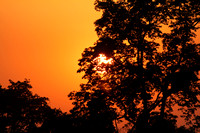 Bardia National Park Nepal Sunset