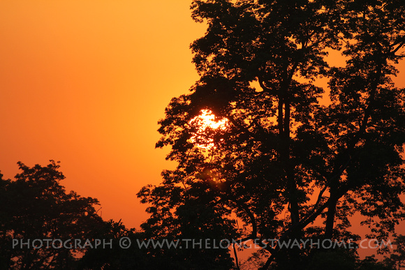 Sunset in Bardia