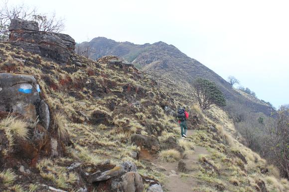 Steep trail along Mardi Himal