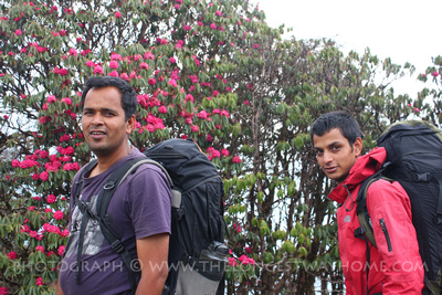 Guides on the Mardi Himal Trek