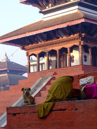 Beggar lady at dawn on a temple in Durba Square Nepal