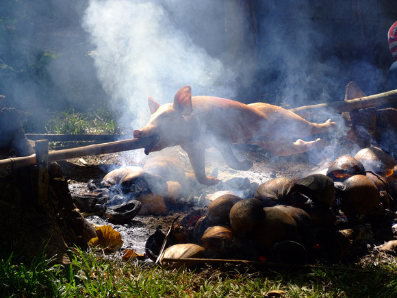 Roasting Lechon in the Philippines