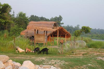 Guard post in Chitwan