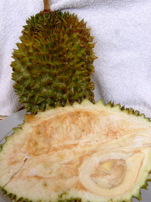 A slice of stinky Durian fruit from the Philippines
