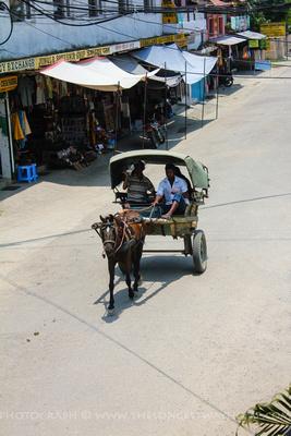 Rickshaw in Chitwan