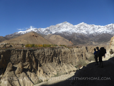 ETrekkers in Spring enjoying Mustang