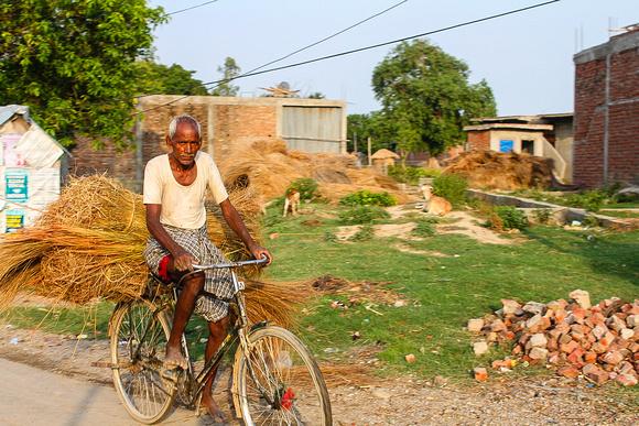 Old man on a bicycle in Lumbini