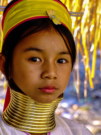 Young Kayan Long Neck in Thailand