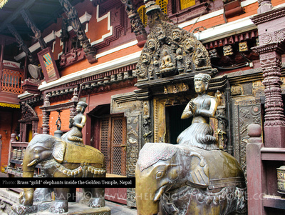 Elephants inside the Golden temple, Patan
