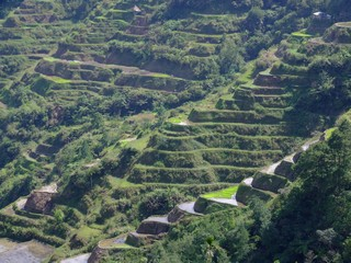 The Rice Terraces in Banaue