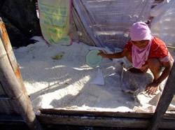 Girl scooping up sea salt