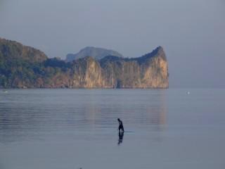 Walking on water in El Nido, Palawan
