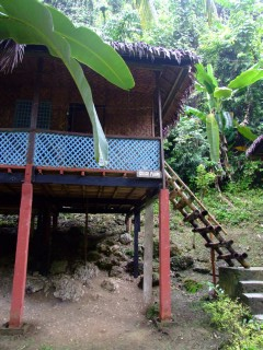 One of the huts at Nut's Hut's, Bohol