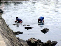 Two men searching for crabs to eat in Davao City