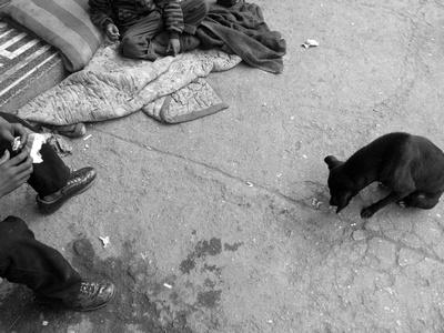 Street Children feeding a dog in Kathmandu