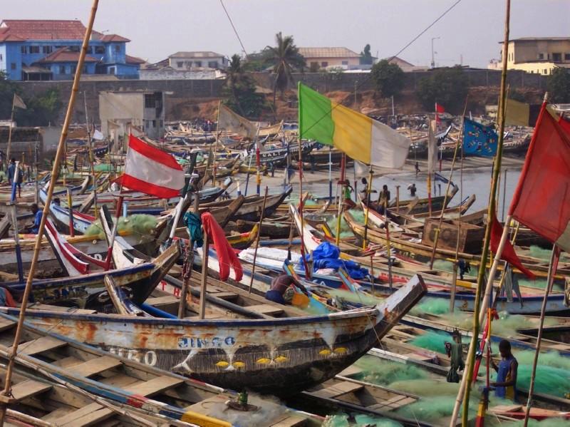 Fishing boats at port