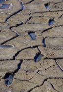 Foot prints in dried mud